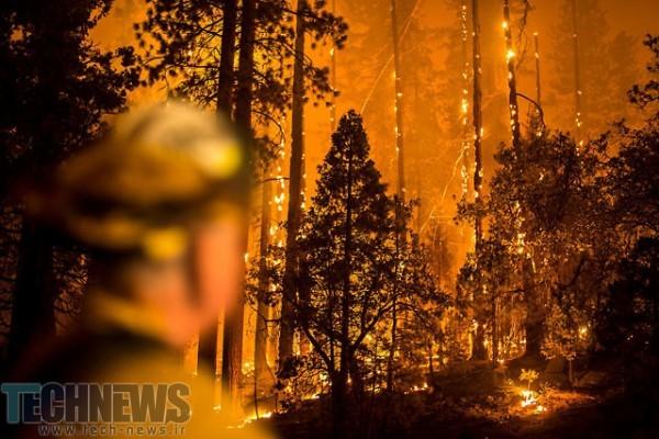 Photo of تصاویر آتشسوزی جنگلهای کالیفرنیا در نیمهشب: تقابل خشم و زیبایی
