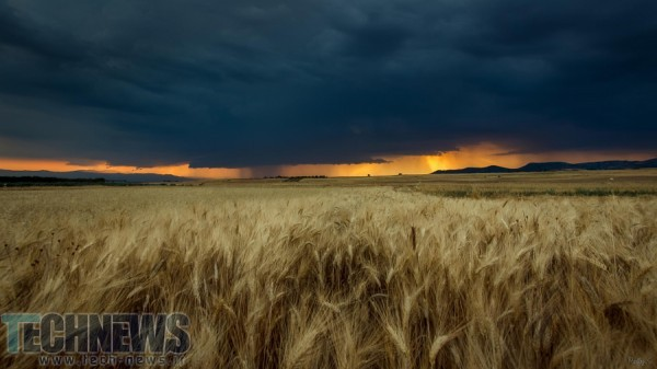 Fields by Sakis Pallas on 500px.com