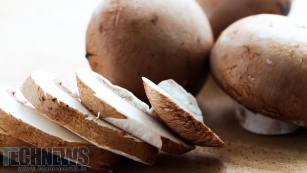Portobella mushrooms improve battery recipe