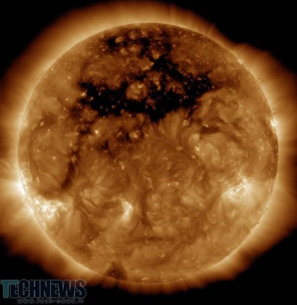 full-sun