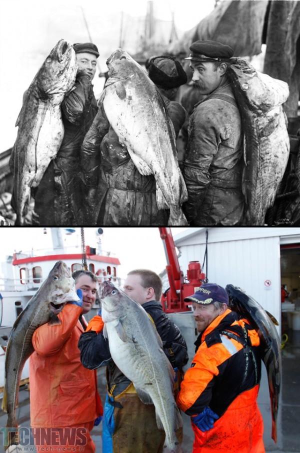 1910-2015_Lofotfiske_i_Ballstad_Vestvaagoey_kommune_Nordland