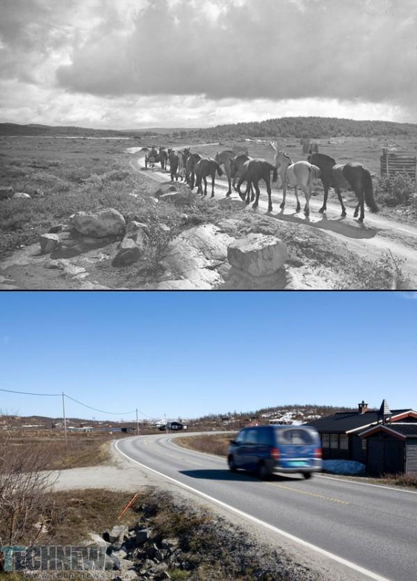 1940_-_2008_Hestedrift_mellom_Geilo_og_Skurdalen_Hol_Buskerud