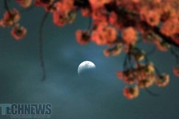 Photo of ژاپن فضاپیماهای بدون سرنشین را به ماه ارسال خواهد کرد