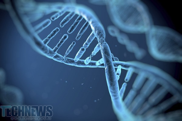 Photo of دانشمندان دریافتند که با تغییر در ژنها میتوان بسیاری از بیماریهای انسانی را ریشهکن کرد