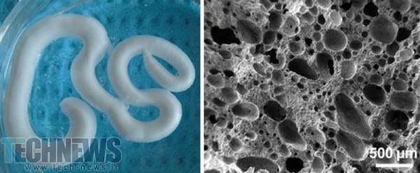 Scientists Create Injectable Foam To Repair Degenerating Bones