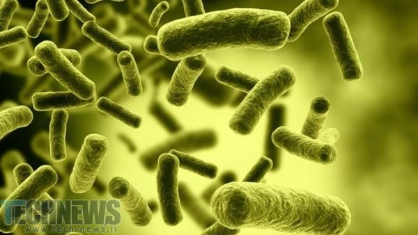 Photo of دانشمندان به کمک ریزذرات موفق به از بین بردن عفونتهای مزمن باکتریایی شدند