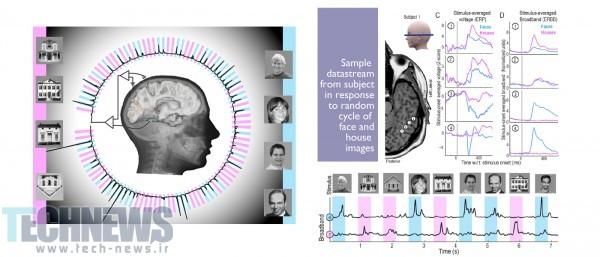 Photo of دانشمندان با نتایجی بسیار نزدیک به واقعیت، موفق به پیشبینی ذهن انسان شدند