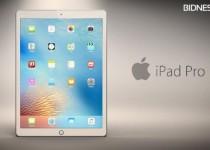 960-is-apple-ipad-pro-129-slowly-heading-toward-failure