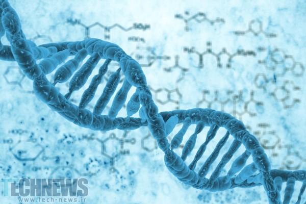 Photo of محققان با استفاده از یک مولکول DNA کوچکترین دیود جهان را ساختند