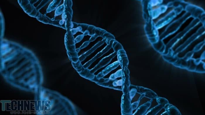 Photo of دانشمندان کوچکترین دماسنج جهان را با DNA ساختهاند