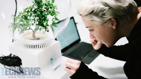 Photo of مایکروسافت به گیاهان قدرت صحبت کردن میدهد