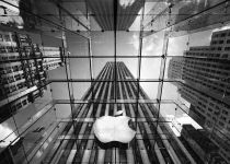 مهرماه امسال اپل آکادمی iOS را در ایتالیا تأسیس خواهد کرد