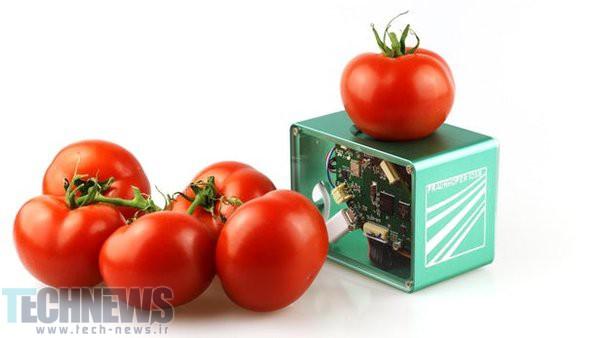 Photo of تشخیص تازگی و سالم بودن مواد غذایی با اسکنر جیبی