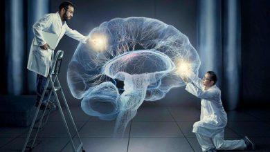 Photo of شبیه سازی فعالیت الکترونیکی مغز برای جوان تر کردن آن