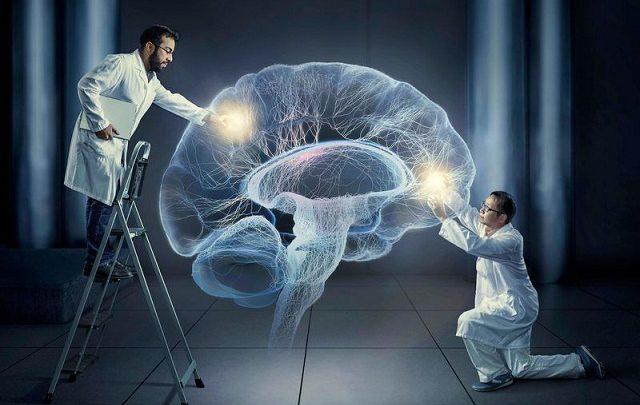 شبیه سازی الکترونیکی مغز انسان