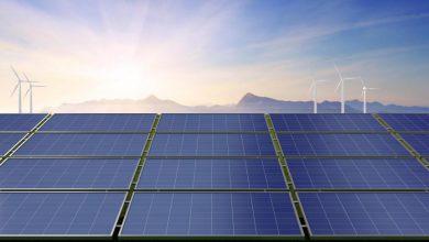 Photo of راه اندازی بزرگ ترین مزرعه خورشیدی در امارات