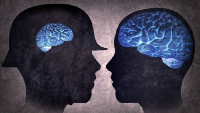 Photo of تبعات منفی بی ثباتی اقتصادی ؛ کوچک شدن مغز