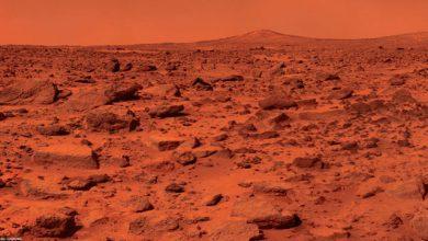 Photo of اظهارات ضد و نقیض کارکنان ناسا درباره وجود حیات روی سیاره سرخ