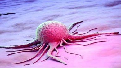 Photo of ساخت مولکولی جدید با قابلیت تشخیص سلول سالم از سلول سرطانی