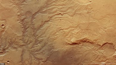 Photo of رودهایی که سال ها قبل در مریخ جریان داشته اند
