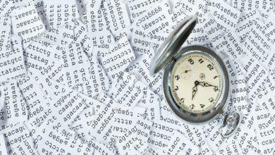 Photo of ساعت مولکولی چگونه به تشخیص بیماریها کمک می کند؟