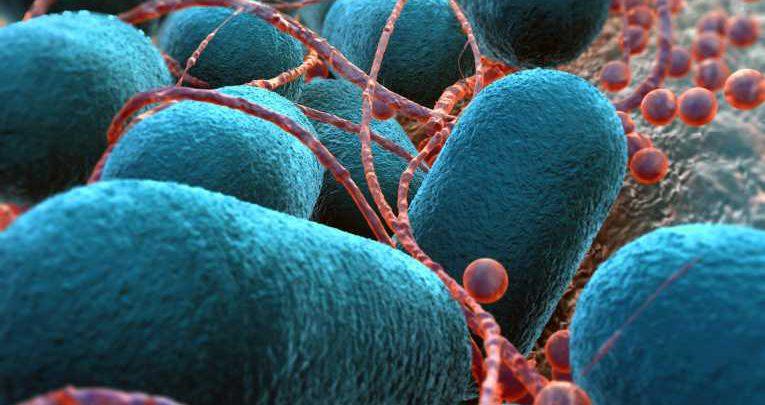 Photo of نسل جدید باکتری ها که توانایی خوردن هوا دارند