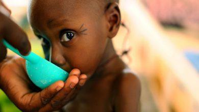 Photo of تولید کپسولهای مولکولی جهت مبارزه با سوء تغذیه در جهان