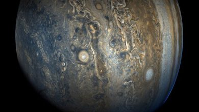 Photo of ناسا موفق به ثبت تصویری از نیمکره جنوبی مشتری شد