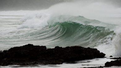 Photo of متخصص ایرانی توانست ارتفاع امواج سونامی اندونزی را پیشبینی کند