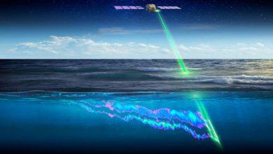Photo of مطالعه نحوه مهاجرت آبزیان از فضا