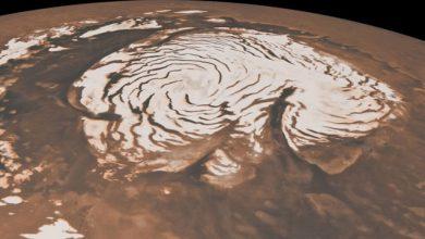 Photo of مدلسازی اقلیم مریخ توسط دانشمندان
