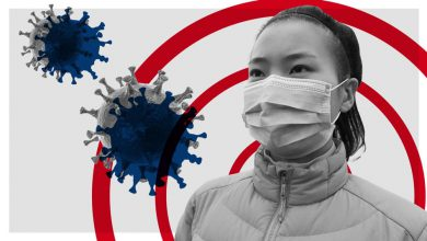 Photo of کرونا نیز مانند سایر ویروسها وارد ایران خواهد شد