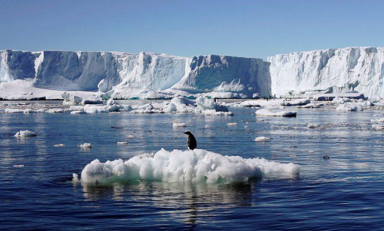 زنگ خطر افزایش دما در قطب جنوب به صدا درآمد