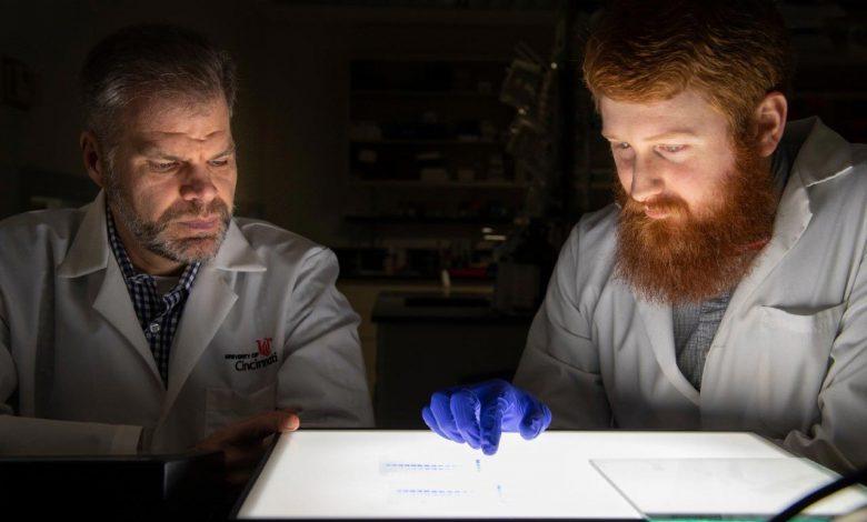 پروتئینهایی که میتوانند چربیهای موجود در خون را از بین ببرند