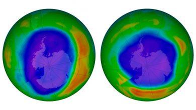 Photo of محققان از ترمیم لایه ازون در منطقه جنوبگان خبر داده اند