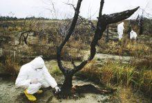 Photo of چندین برابر شدن تشعشعات هستهای چرنوبیل در پی آتشسوزی گسترده