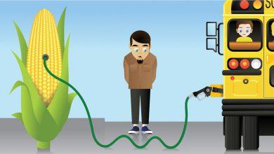 Photo of دو دانش آموز سوخت زیستی سازگار با محیط زیست تولید کردند