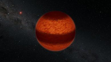 Photo of ستاره شناسان با روش قطبش سنجی یک کوتوله قهوه ای راه راه را رصد کردند
