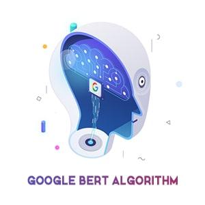google-bert-algorithm