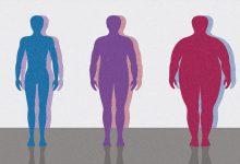 Photo of ژنی که به عنوان کلید چاقی در بدن افراد شناخته میشود