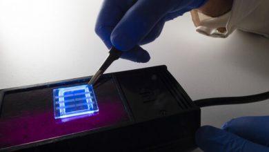 Photo of تولید صفحه نمایش OLED با موی انسان