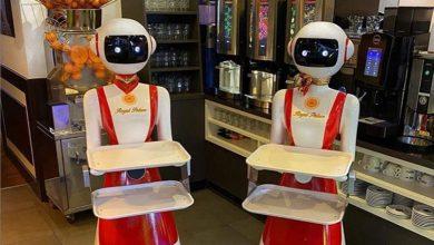 Photo of روبات های پیشخدمت در رستورانهای هلند
