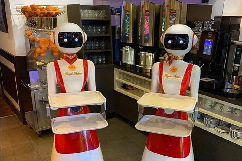 روبات های پیشخدمت در رستورانهای هلند