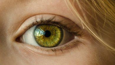 Photo of طراحی نوعی اسکنر چشمی که قادر است سن زیستی را تشخیص دهد
