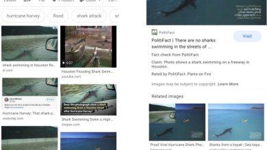 Photo of اضافه شدن قابلیت راستیآزمایی گوگل در جستجوی تصاویر