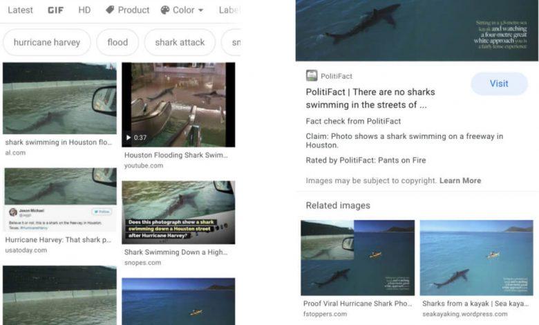 اضافه شدن قابلیت راستیآزمایی گوگل در جستجوی تصاویر