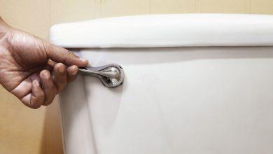 Photo of محققان از نقش سیفون توالت فرنگی در انتشار ویروس کرونا خبر دادند