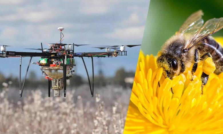 استفاده از پهپادها به جای زنبور عسل در طبیعت