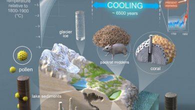 Photo of ضربه مهلک گرمایش زمین به نتایج مثبت عصر یخبندان