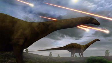 Photo of برخورد سیارکها با زمین عامل اصلی انقراض دایناسورها شناخته شد